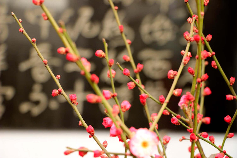 Shanmei branch