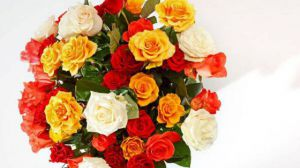 各种花卉的象征意义