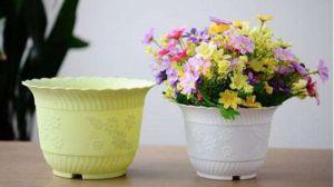 花盆有哪些种类