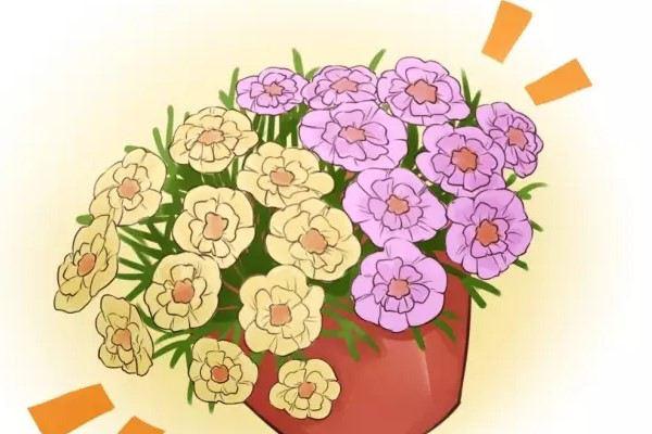 40度高温,她家的花依然开成球,连落脚地都没有!