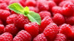 覆盆子和树莓的区别