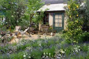 等我退休了,就回乡下建个院子,种菜养花,做饭品茶!