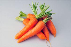 胡萝卜的常见品种