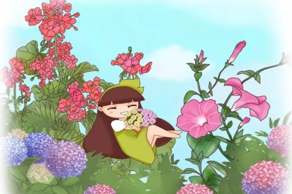 这7种花一开就成球,花朵抱成团,阳台都要挤爆了!