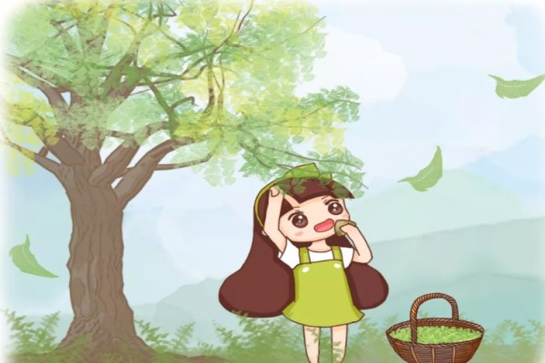 """春天摘把它,让你一年有""""榆""""钱,舌尖感受""""椿""""天!"""