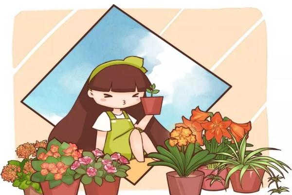 老花农春天这么施肥,花呼呼开满盆,叶子油亮发光!