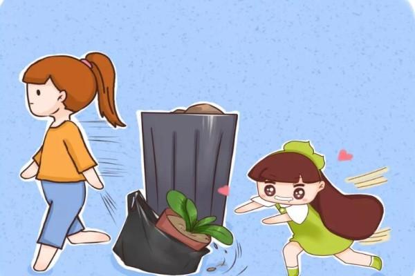 她嫌丑扔掉的花,邻居捡去养成宝,后悔死了!