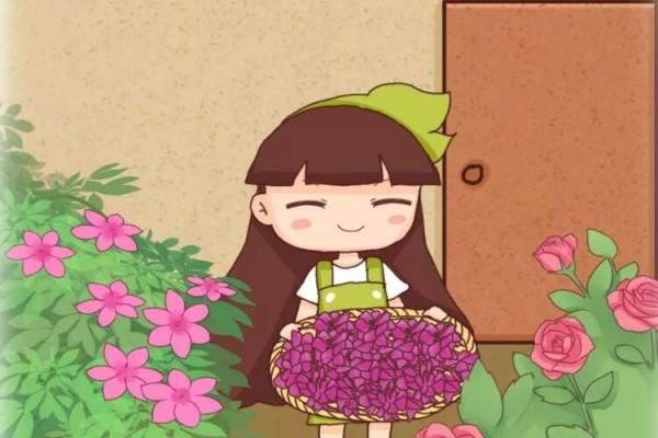 花瓣落了赶紧捡!加点料兑水一浇,年年开不停!