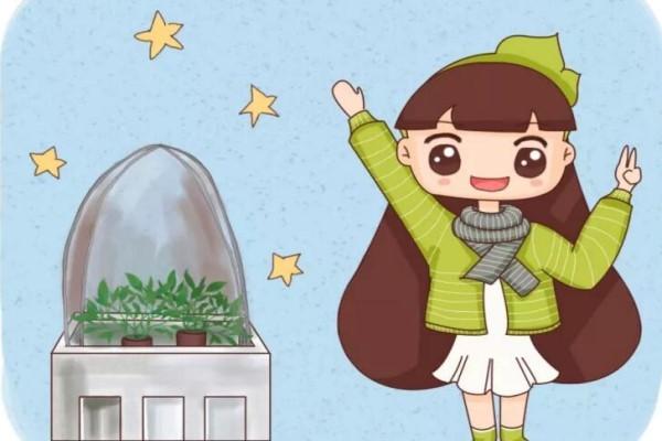 给花戴顶大帽子,花朵咕嘟咕嘟冒,1个月撑爆阳台!