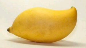 芒果吃多了会怎么样