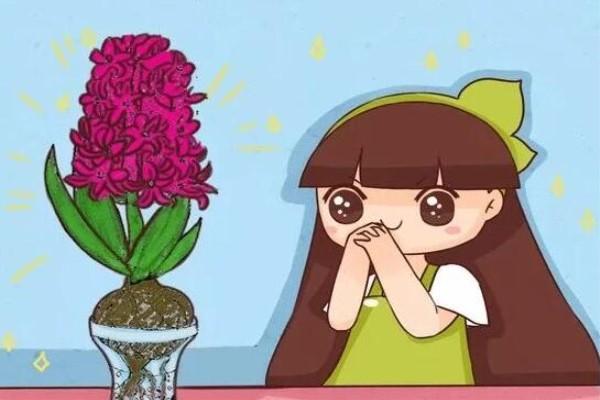 这6种花,花期超级长,养1盆365天能开花!