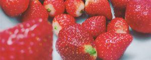 草莓干叶子是怎么回事