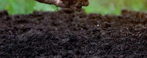 酸性土壤怎么制作,适合种什么花