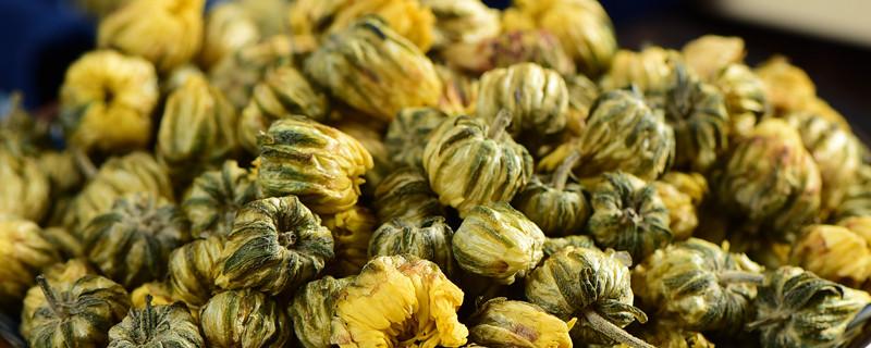 胎菊和枸杞泡茶的功效,正确喝法