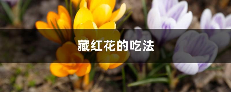 藏红花的吃法,一次吃多少