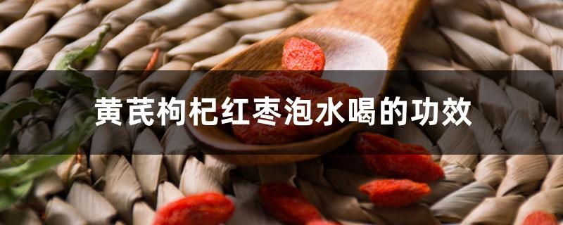 黄芪枸杞红枣泡水喝的功效和禁忌