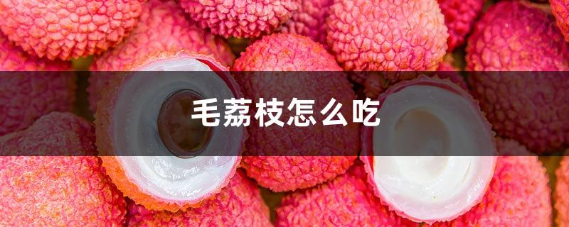 毛荔枝怎么吃,毛荔枝图片