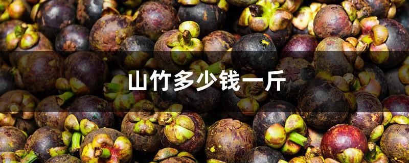 山竹多少钱一斤,山竹图片
